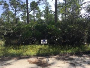 Tropical Gulf Acres Building Lot